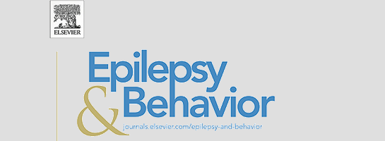 Appropriate use of generic and branded antiseizure medications in epilepsy: Updated recommendations from the Italian League Against Epilepsy (LICE)